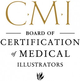 Certified Medical Illustrator from BCMI logo