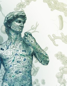 This journal cover was for the University of Toronto's Department of Immunology magazine, which showcases news and research of the department and its role both in the university and the scientific community. This issue focused on the human microbiome and the totality of microbes inside the human body. This cover reimagined Michelangelo's David to serve as a reminder that behind every noble, thinking human being, is a unique work of microbes.